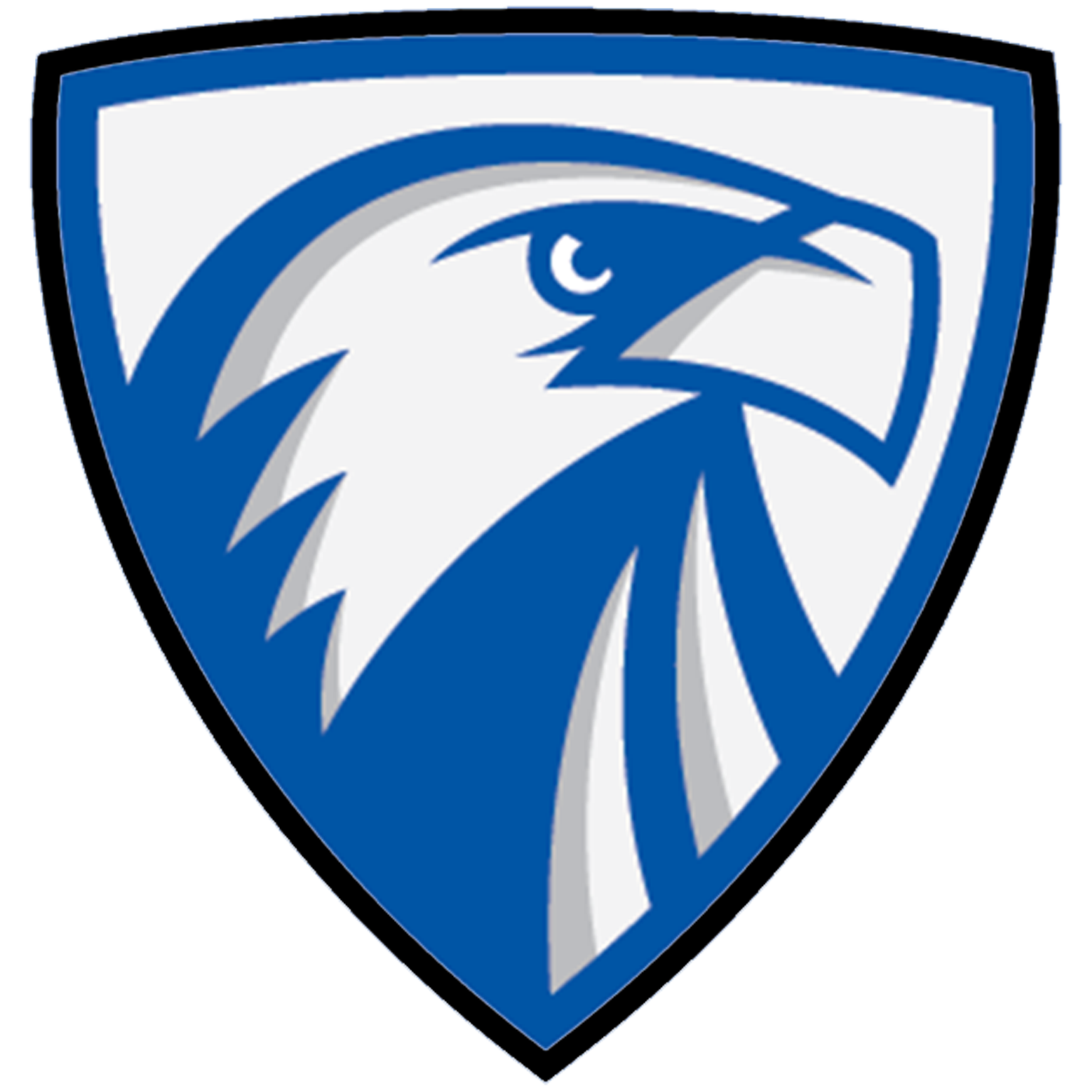 Heritage christian  mn  eagles logo